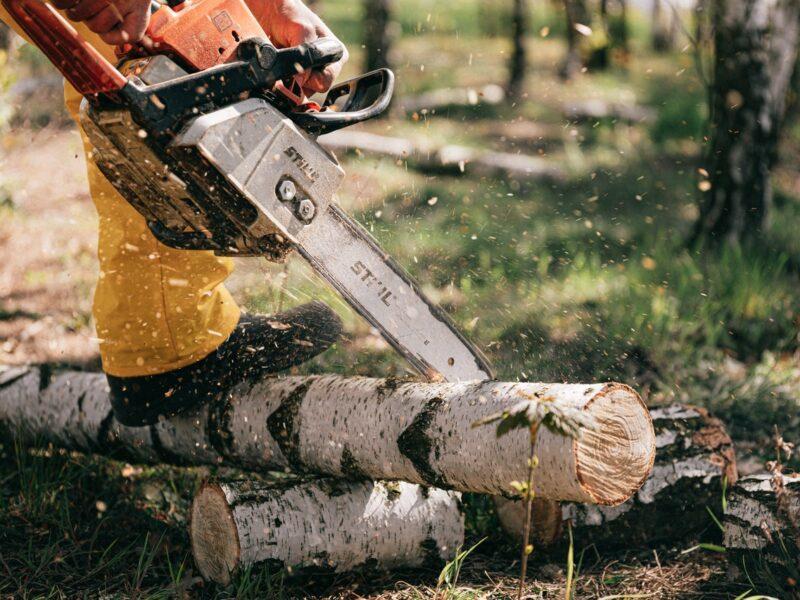 Chainsaws-Pole-Saws-Black-friday