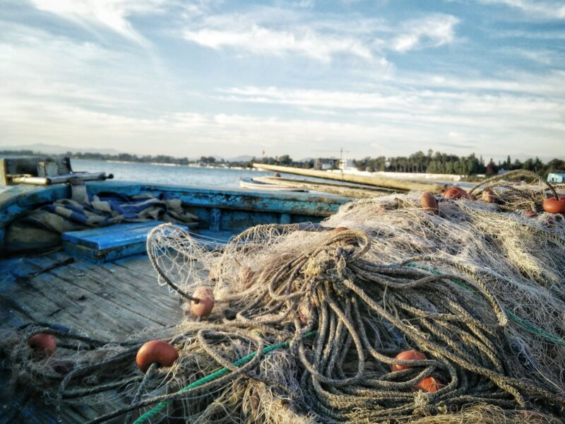 Best Fishing Nets for a Large Catch